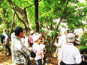 森の案内人養成講習会